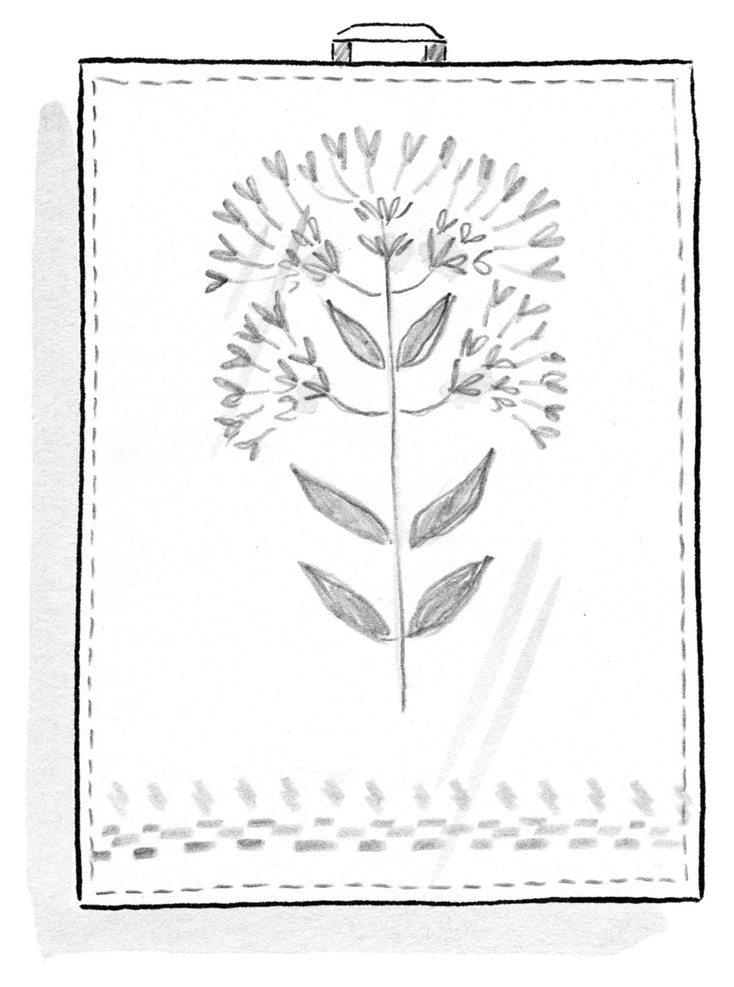 """Oregano"" linen tea towel"