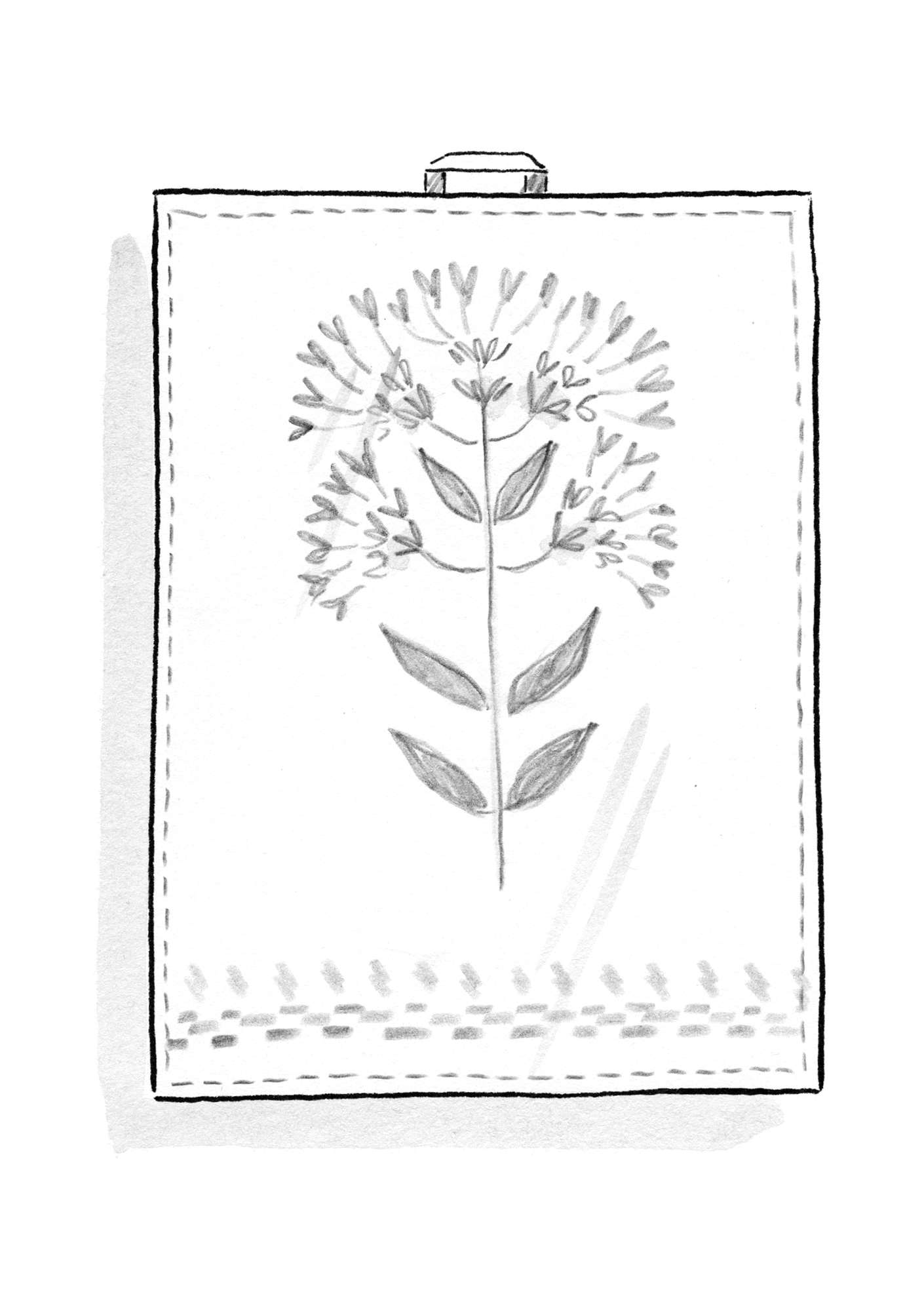 """Oregano"" linen tea towel offwhite"