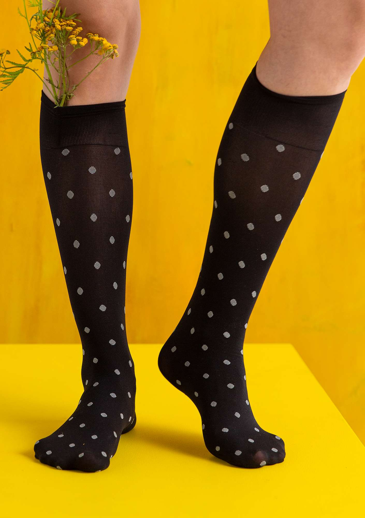 Dotted knee-highs black